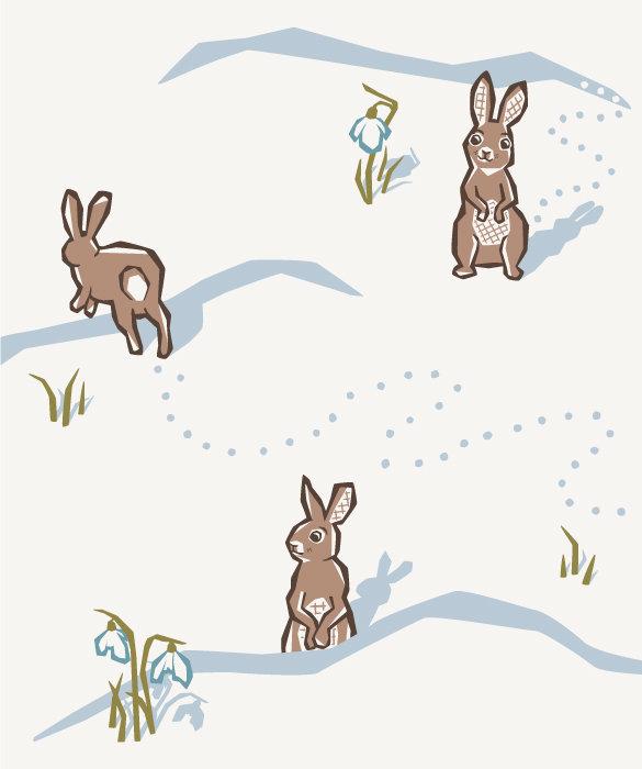 rabbits-character-illustration-kiera-lof