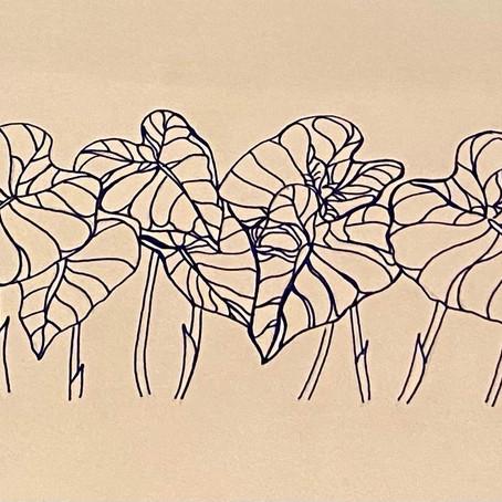Drawing by Walker S.