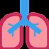 pulmon.png