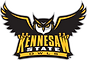 Kennesaw_State_Athletics_Primary_Logo.pn