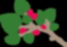 mulberry leaf logo transparent.png