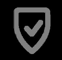 Secure Icon - Grey