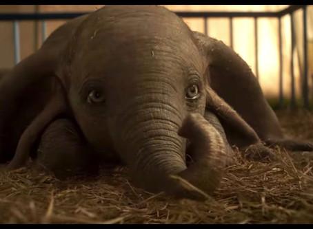 Dumbo, entre elefantes rosas