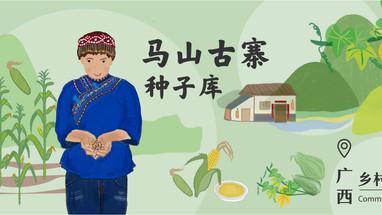 乡村种子库 |马山古寨,妇女走出的种子之路