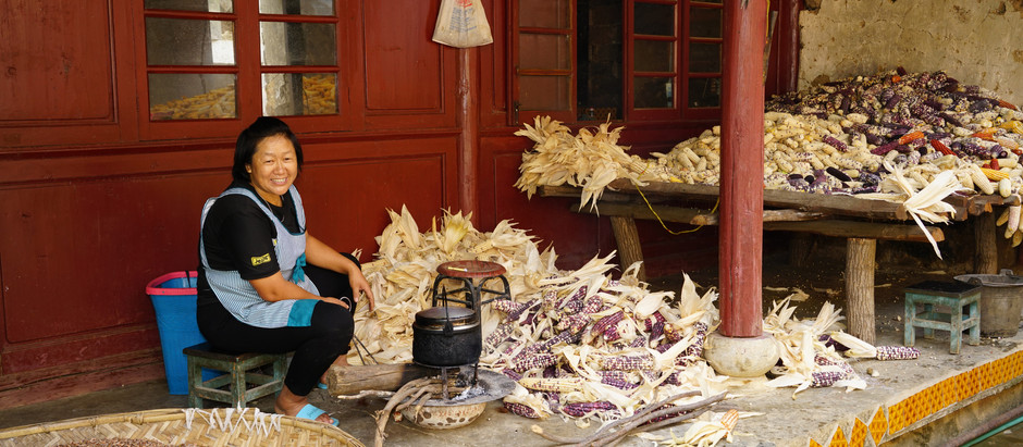 Nature-based solutions to climate change: a woman story from Yunnan, SW China