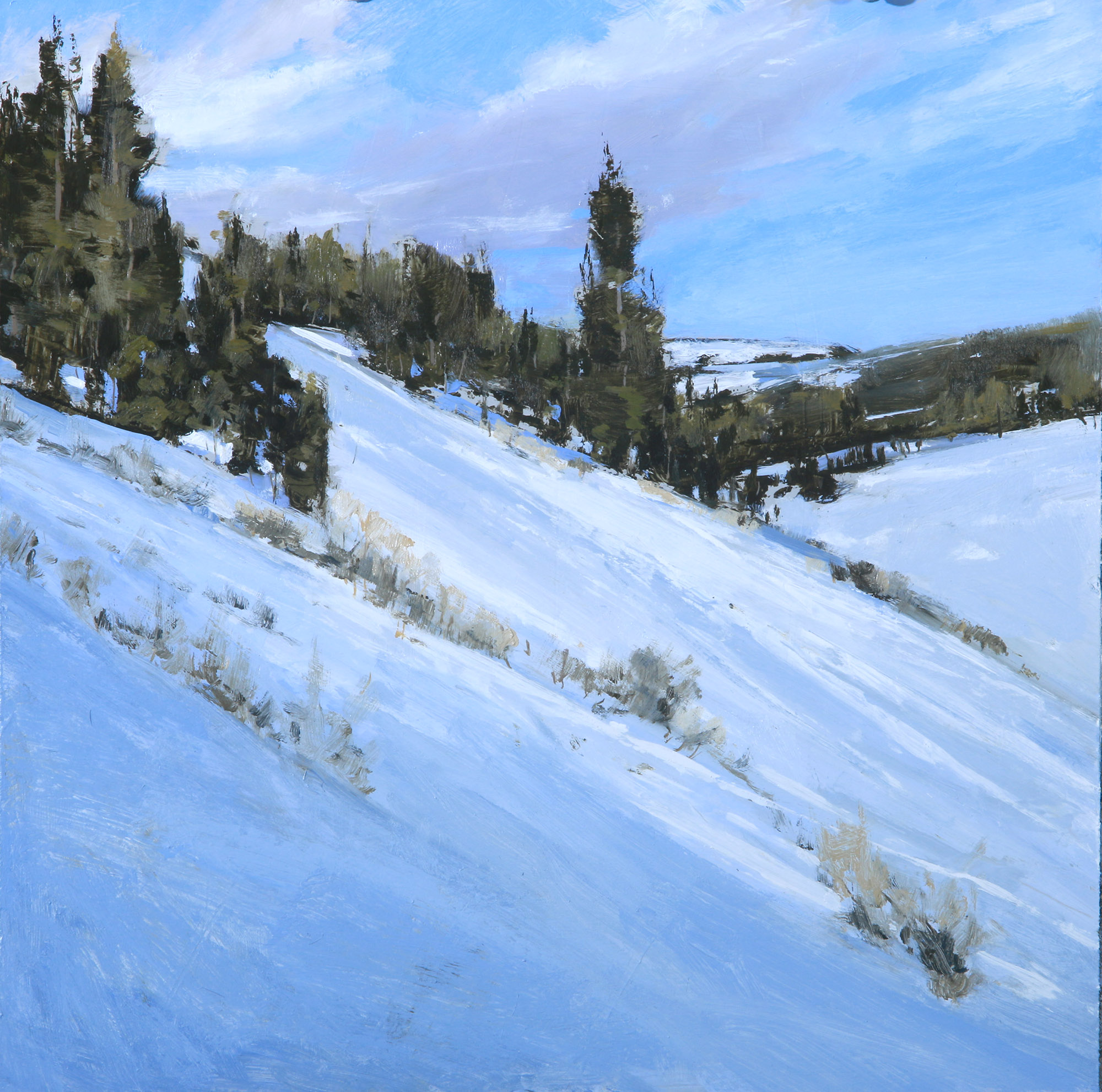 winter hill Skorut 14x14