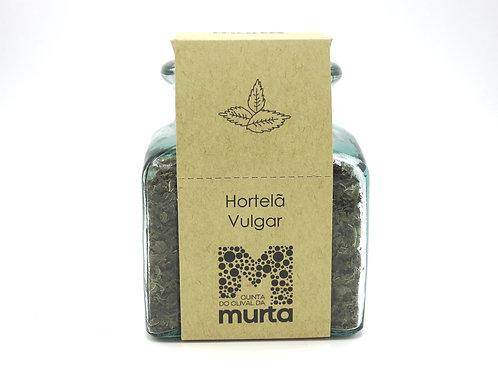 Hortelã-Vulgar