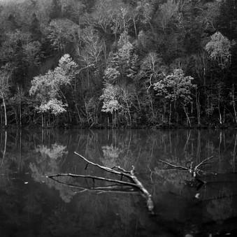 silence-4.jpg