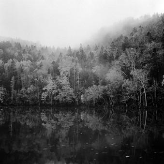 silence-2.jpg