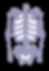 neurological-musculoskeletal-disorders.p