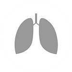 lungs_300x-8.png