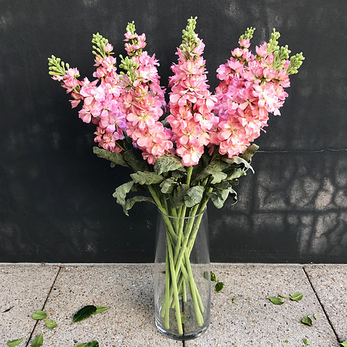 Stock Flower - Pink