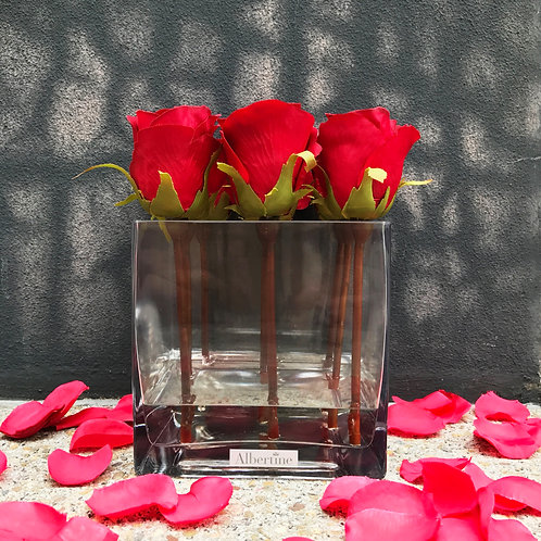 Square vase Rose bud - Cherry Red