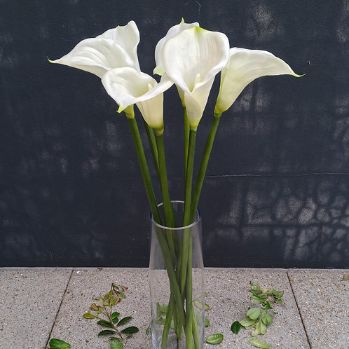 Large Calla Lily - White