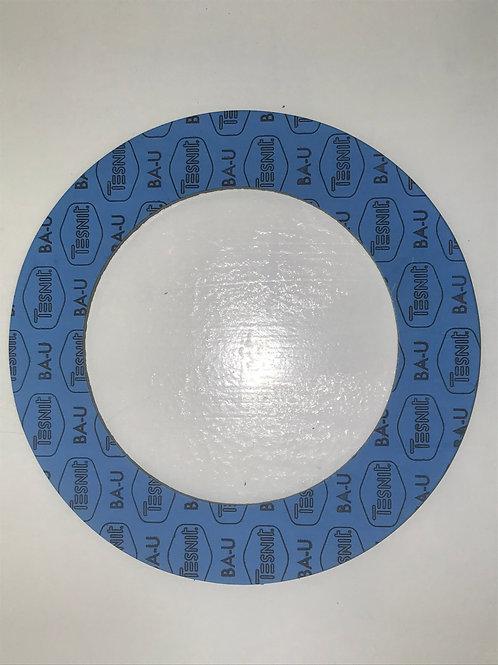 """GSK-023 - 6"""" Ring Gasket (300LB)"""