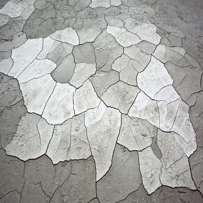 дракон, фотограф Егор Войнов