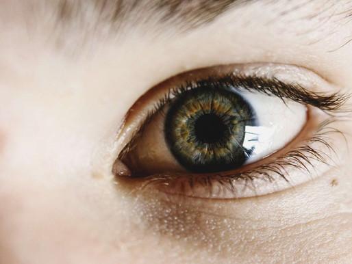 The Power of Fresh Eyes
