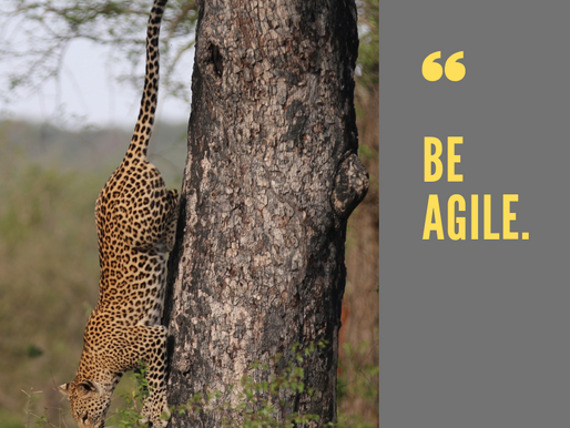 Why Leaders Cannot Afford NOT To Be AGILE