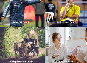 The Many Types of Coaches