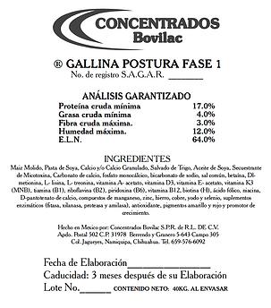 Gallina Postura Fase 1 Bovilac