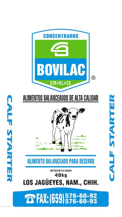 Becerro Bovilac