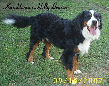 Benson Sept 07 (6.JPG