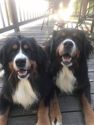 Otto and Bleu.jpg