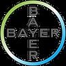 Logo_Cross_Screen_RGB.png