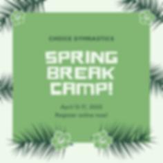 2020 Spring Break Camp.png