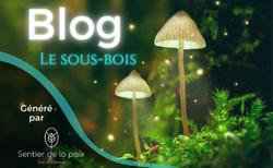 Lancement du blog Le sous-bois