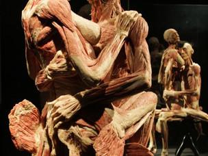 """""""I mondi del corpo"""": l'anatomia è arte - di Claudio Lamberti"""