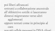 """""""Verticali"""" (Einaudi, 2009) e """"La misura dello zero"""" (Einaudi, 2015) di Bruno Galluccio - di Mario F"""