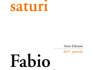 """""""Ambienti saturi"""" (Amos Edizioni, 2017) di Fabio Donalisio - di Mario Famularo"""