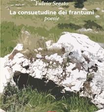 Fulvio Segato – La consuetudine dei frantumi – di Luca Cenacchi