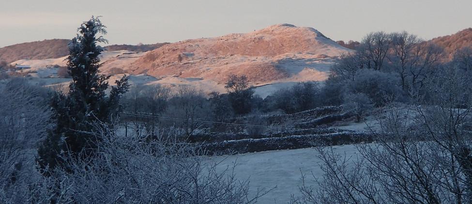Winters morning.JPG