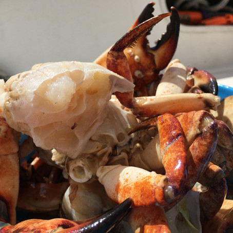 5 Ways to Enjoy the Ultimate Crab Feast
