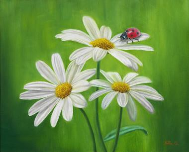 Three Daisies and a Ladybug