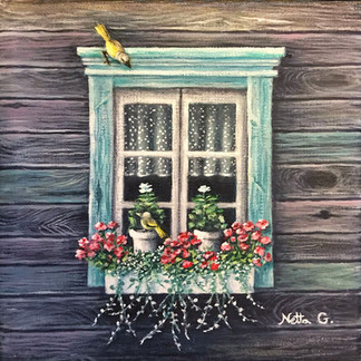 ציפורים על חלון