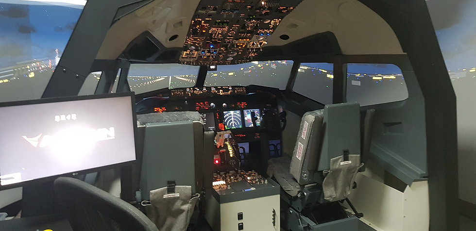 B737 Cockpit Shell with Liners
