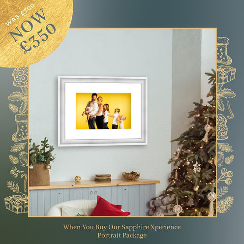 Christmas Sale Ads frames -sapphire.jpg
