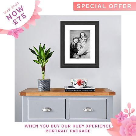 Mother's Day Sale Ads frames.jpg