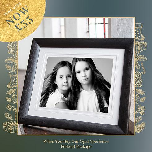 Christmas Sale Ads frames -opal.jpg