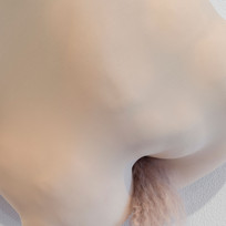 Nude Form (with auburn hair) detail