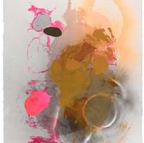 Nature Studies (pink splat, canula shadow)