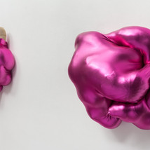 Shiny Pink Forms