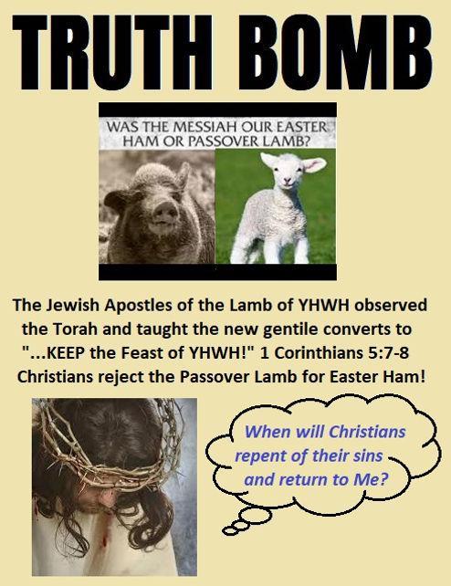 Truth Bomb Passover.jpg