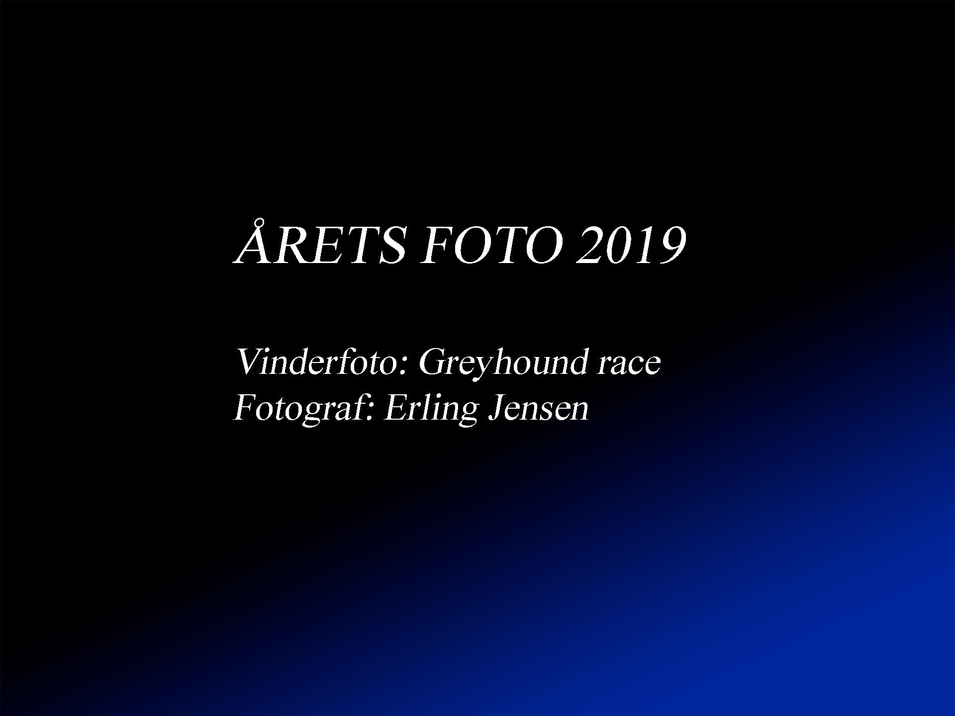 Vinder_af_Årets_foto_2019.jpg