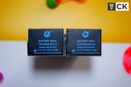 Panasonic G80 Batteries CKYEW.jpg