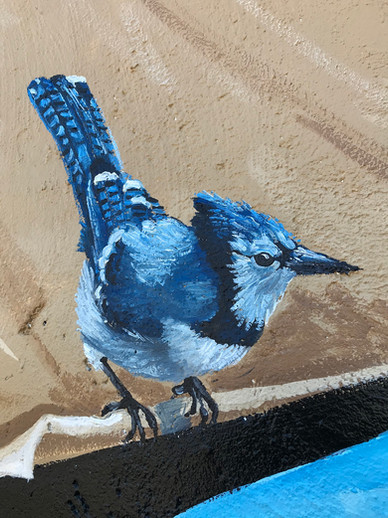 Murals By Marg MPV BIA Mural Blue Jay.jp