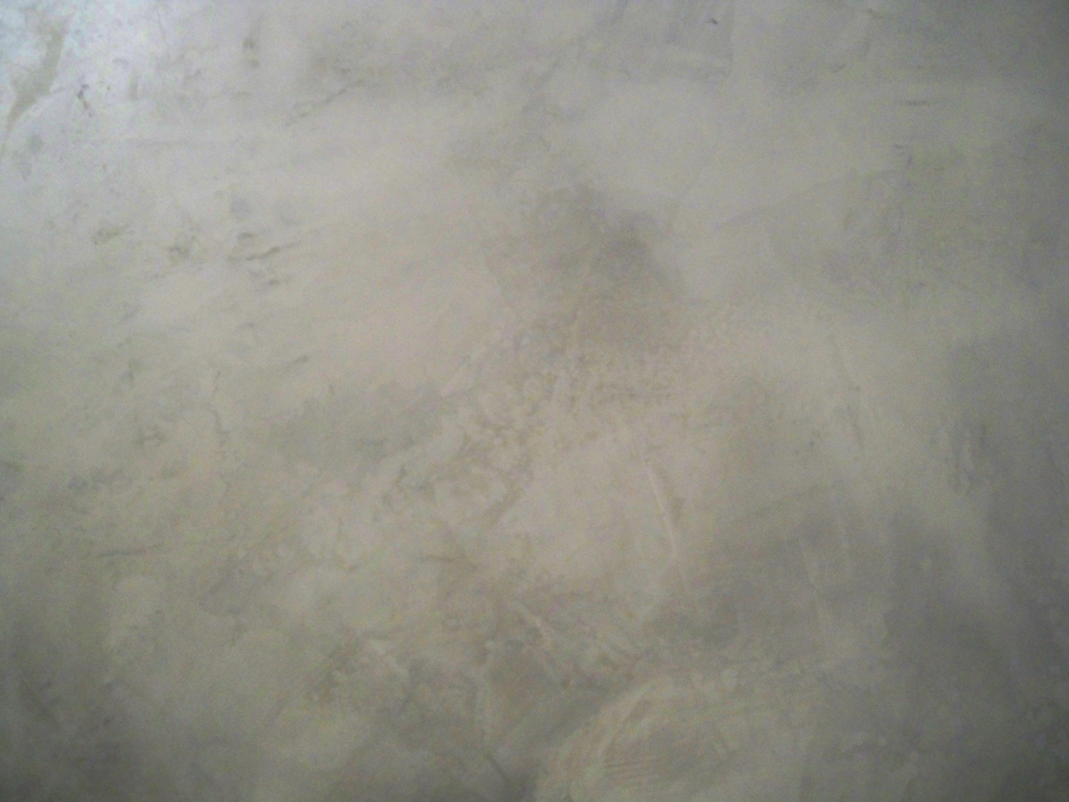 Murals By Marg Silver Venetian Plaster 3.JPG